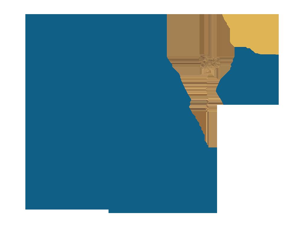 pissenlit logo Anaïs Savatier - Naturopathe à Bourgoin-Jallieu dans l'Isère