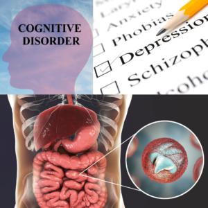 liens entre dysbiose intestinale et troubles psychiques